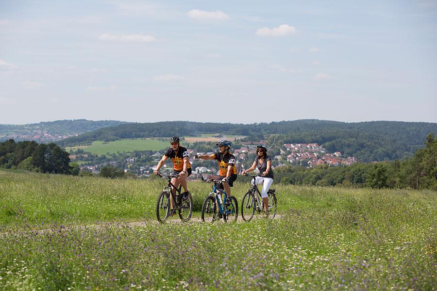 Fahrradtour durch's Merklinger Ried