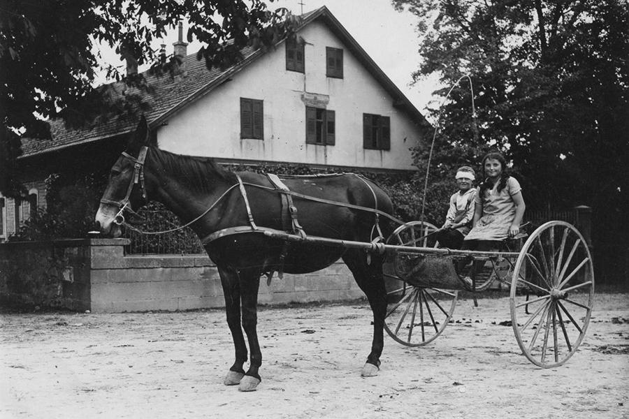 Pferdewagen am Ihinger Hof (1928)