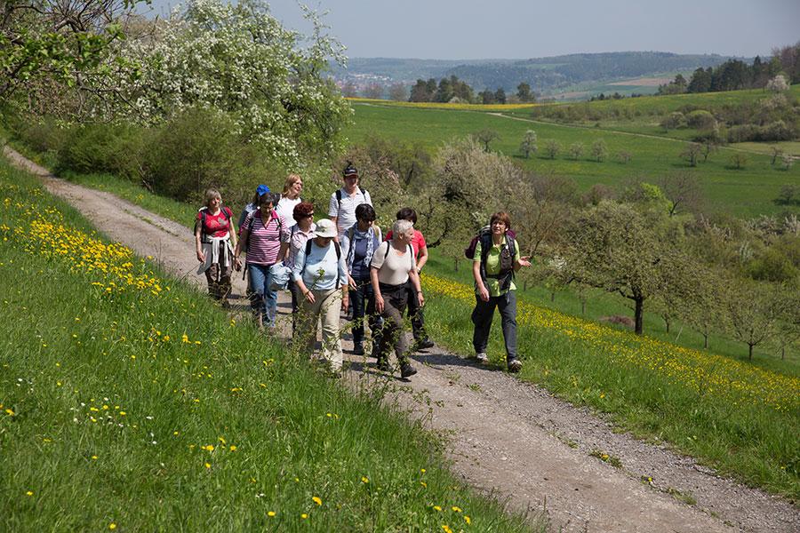 Naturwandungen rund ums idyllische Heckengäu