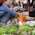 Wochenmarkt auf dem Marktplatz