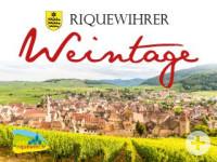Riquewihrer Weintage