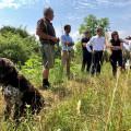 Besprechung zum Schutz der Insekten
