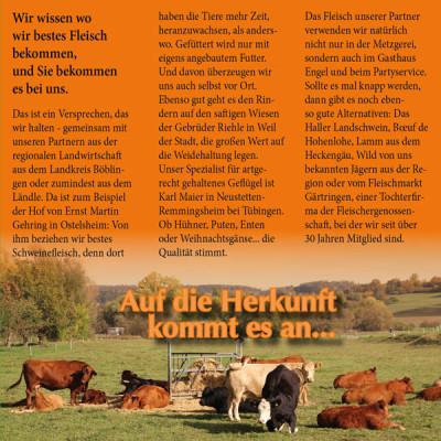 Folder_Heinkele_2012_S2