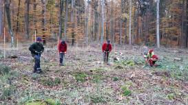 Waldarbeiter bei der Wiederaufforstung